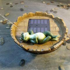 B-Ware Teichpumpen-Set Solar Happy-Frosch-1
